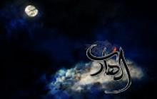 کلیپ / مداحی شهادت امام هادی (ع)