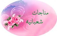 حاج میثم مطیعی/ مناجات شعبانیه