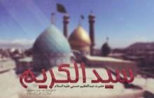 کلیپ سید الکریم/حضرت عبداالعظیم حسنی علیه السلام