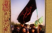 مجموعه نمایشگاهی عکس راهپیمایی اربعین / عکس دوازدهم