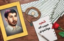 فایل لایه باز تصویر شهید حبیب اله جوانمردی