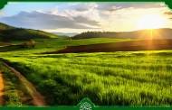 فایل لایه باز تصویر ایرانگردی / طبیعت کیاسر مازندران