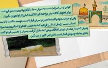 ویدئو گرافیک آیات قرآن قسمت سیزده احترام به پدر